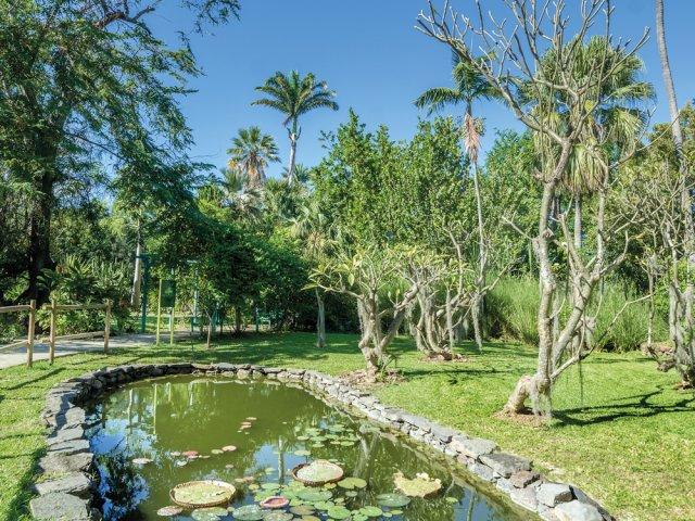 Jardin D Eden De L Ermitage Tourisme A La Reunion Randopitons