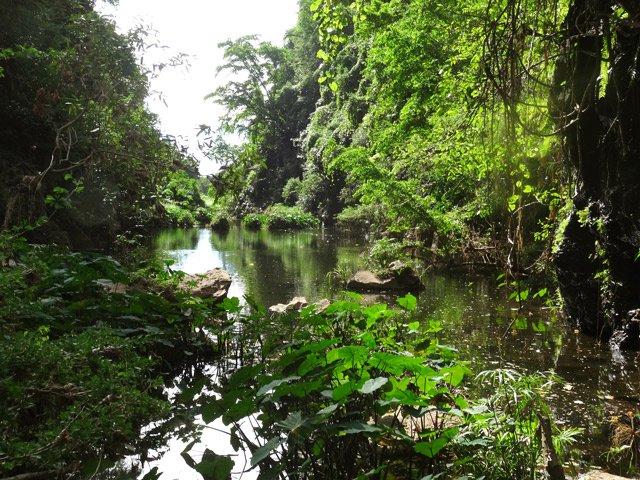 La ravine bernica et le bassin pigeons saint paul - Pneumologue bassin arcachon saint paul ...